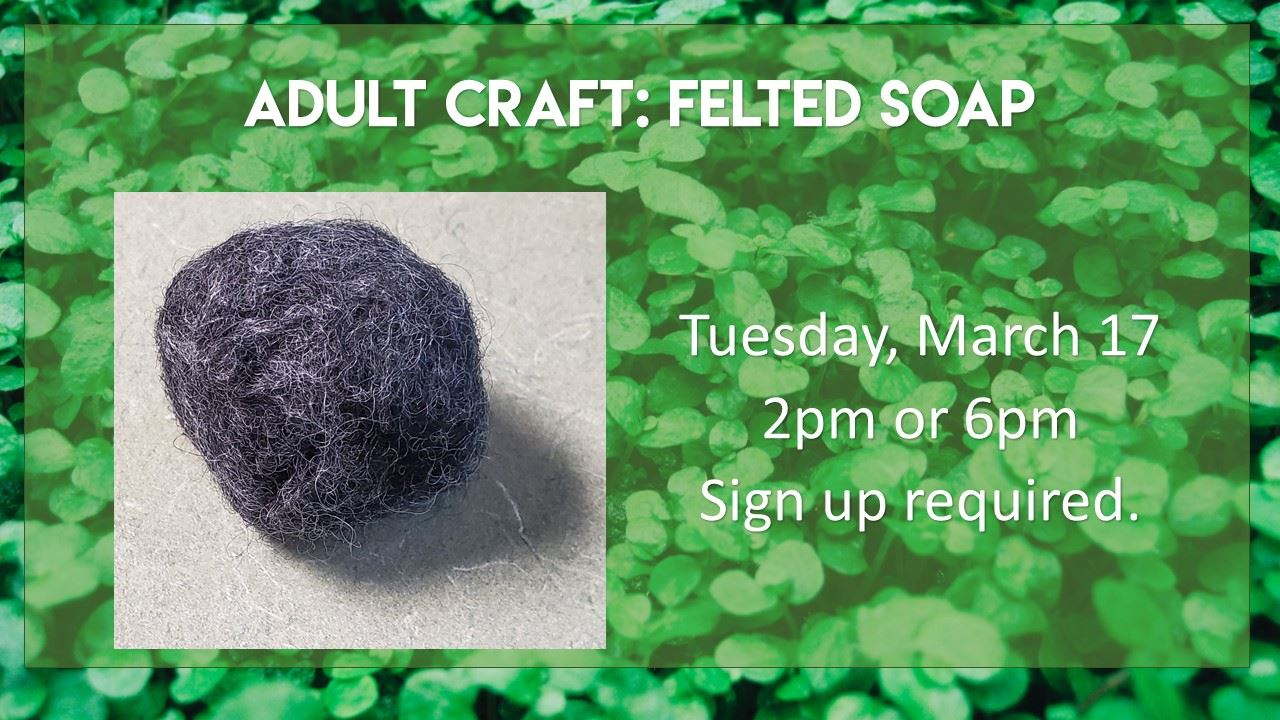 adult craft felted soap
