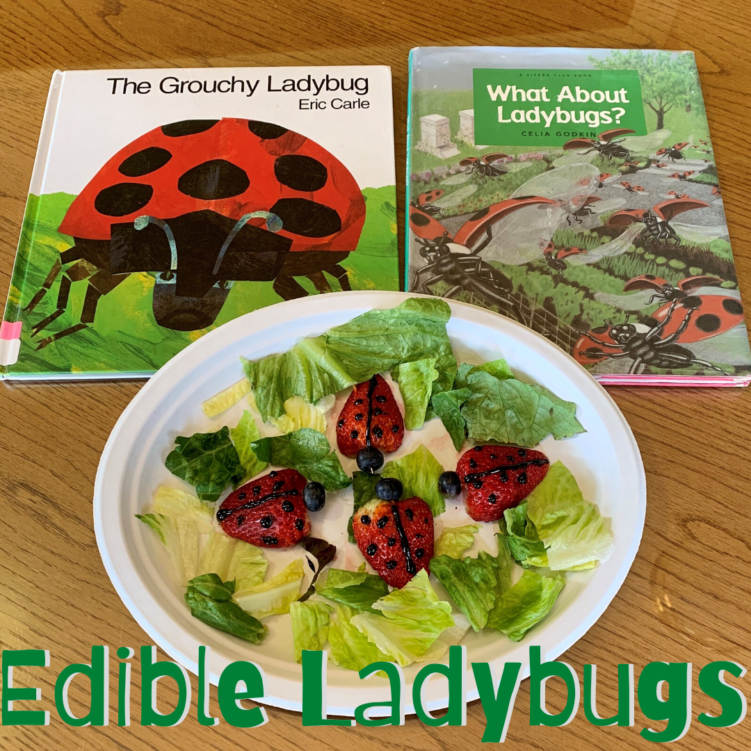 Edible Ladybugs