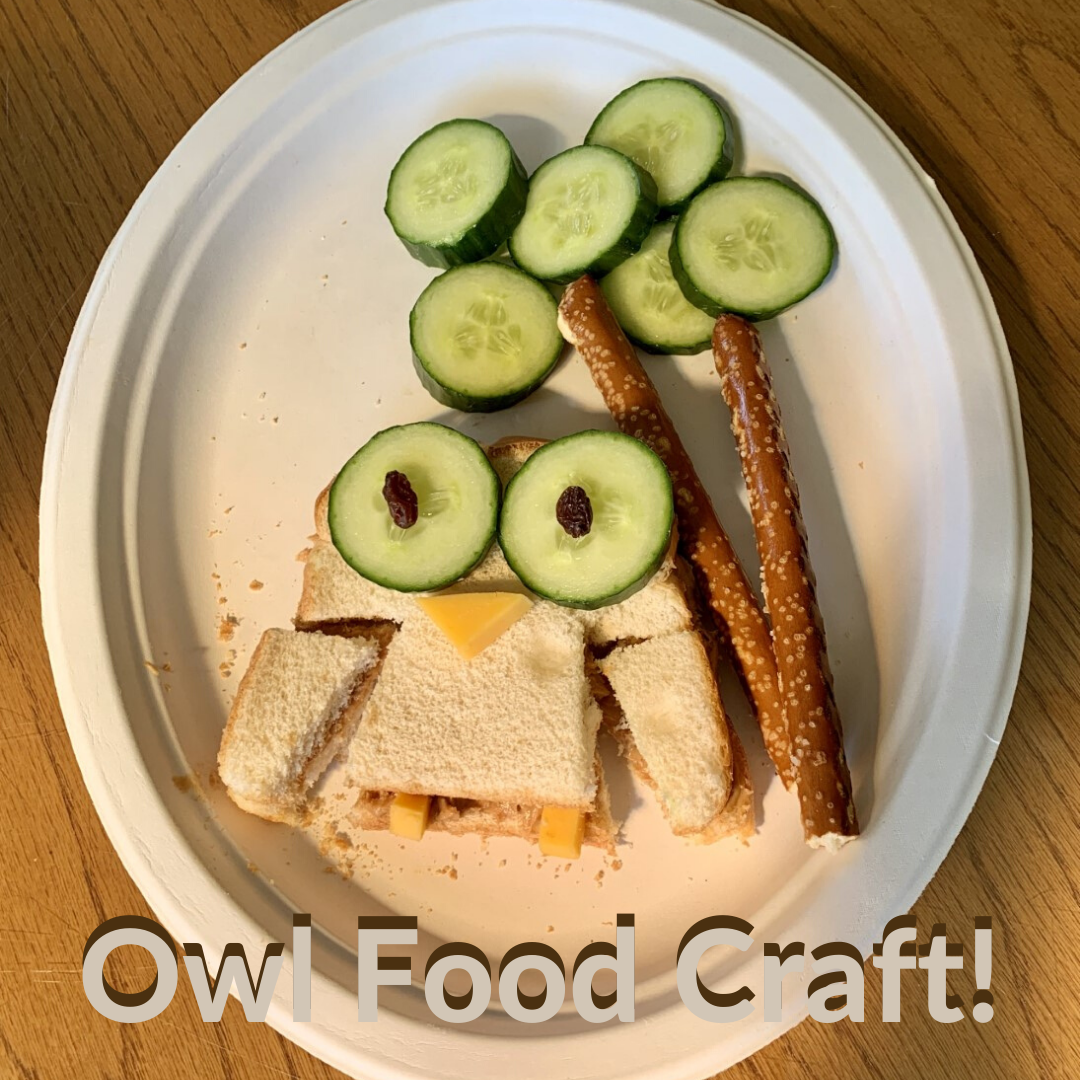 Owl Food Craft